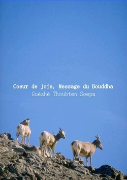 Heart of Joy, Message of the Buddha (French)