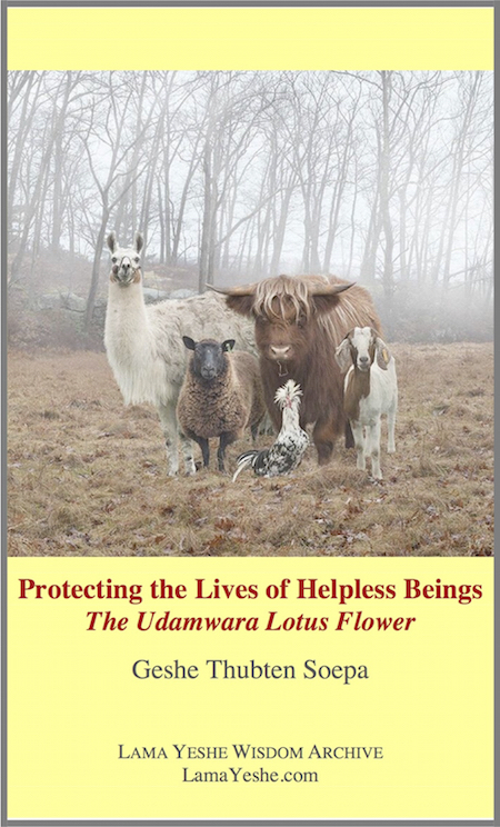 The Udamwara Lotus Flower: Protecting the Lives of Helpless Beings